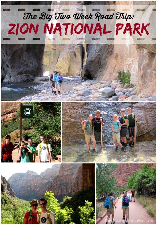 Zion National Park Road Trip