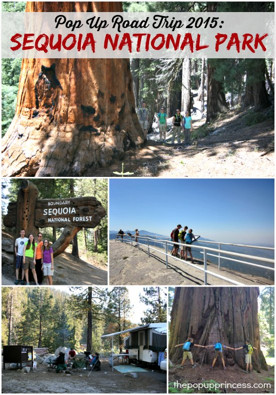 Vacationing in Sequoia National Park
