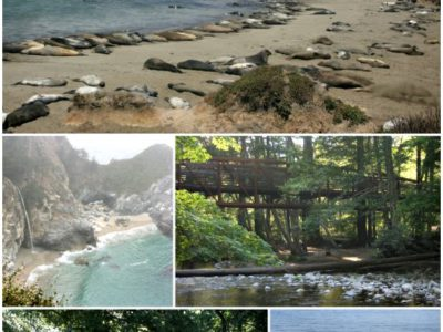 Pop Up Road Trip 2015:  Big Sur, California