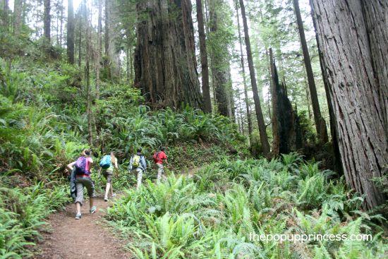 James Irvine Trail