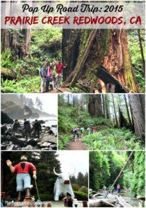 Pop Up Road Trip 2015: Prairie Creek Redwoods, CA