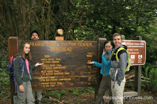 Hiking at Prairie Creek Redwoods
