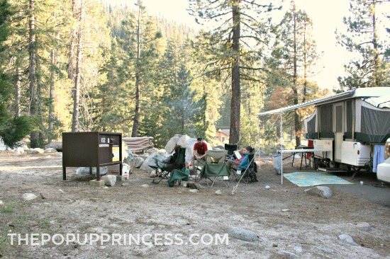 Camping in Bear Country